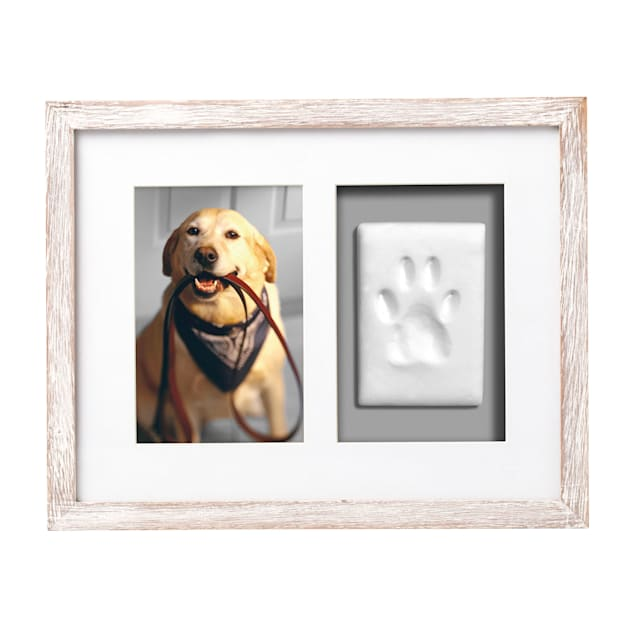 Pearhead Pet Pawprints Wall Frame Kit in Distressed White - Carousel image #1