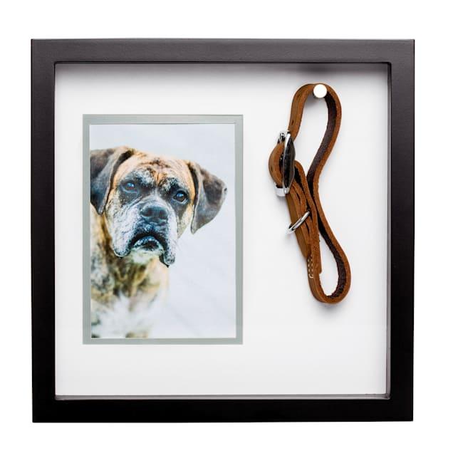Pearhead Pet Collar and Photo Keepsake Frame Set, Large - Carousel image #1