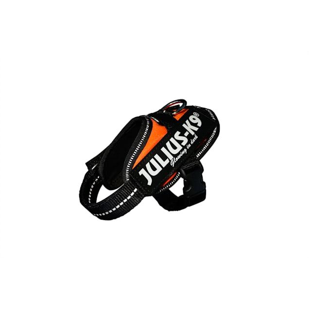 Julius-K9 UV Orange Dog Harness, 3X-Small - Carousel image #1