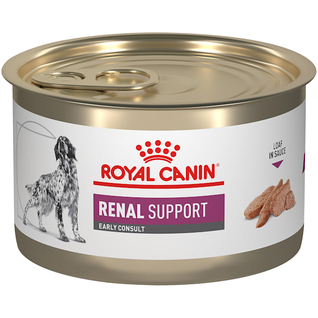 Royal Canin Veterinary Diet Canine Renal Support Early Consult Loaf in Sauce Wet Dog Food, 5.2 oz., Case of 24 - Carousel image #1