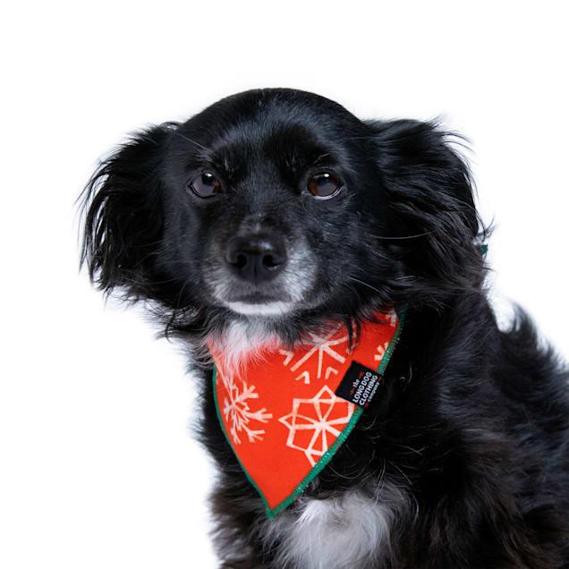 Long Dog Clothing Co. The Noel Reversible Dog Bandana, Small - Carousel image #1