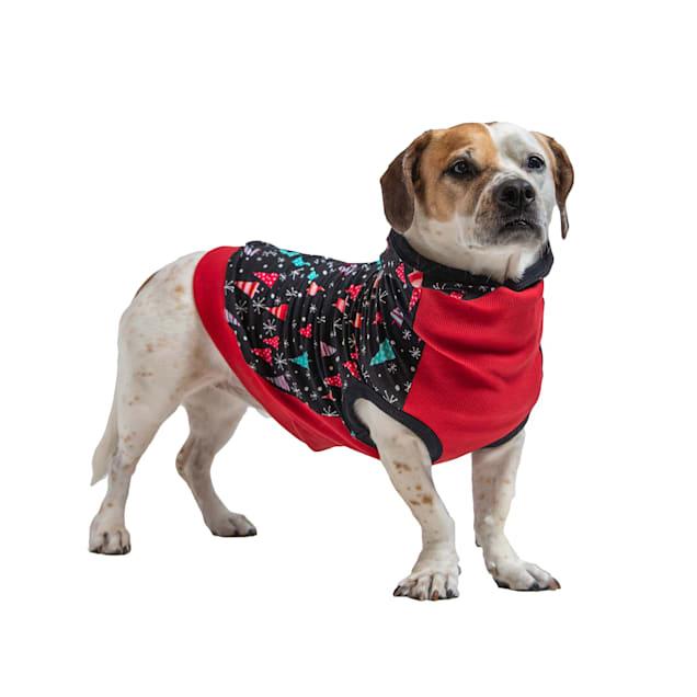 Long Dog Clothing Co. The Wonderland Holiday Dog Hoodie, X-Small - Carousel image #1