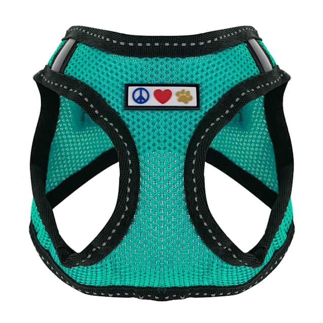 Pawtitas Aquamarine Reflective Dog Harness, XX-Small - Carousel image #1