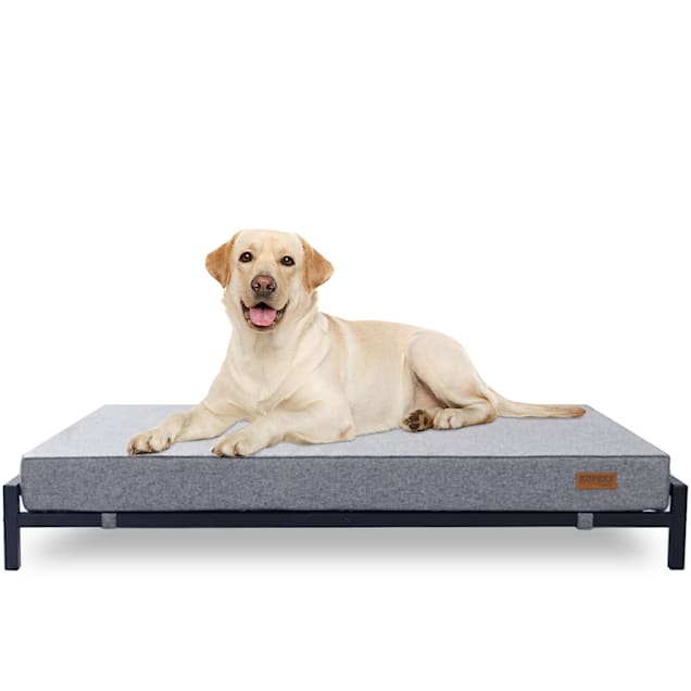 """Kopeks Elevated Indoor/Outdoor Bed with Foam Mattress for Dogs, 48"""" L X 34"""" W X 8.5"""" H - Carousel image #1"""