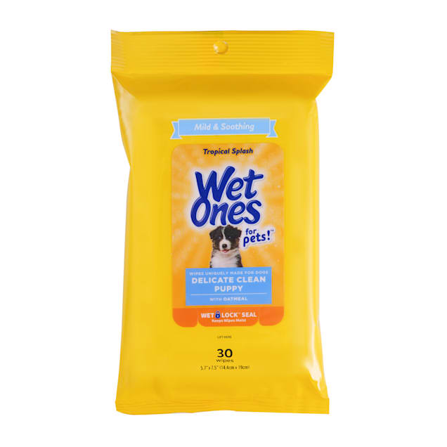 Wet Ones for Pets Delicate Clean Puppy Wipes with Oatmeal in Tropical Splash Scent and Wet Lock Seal, Count of 30 - Carousel image #1
