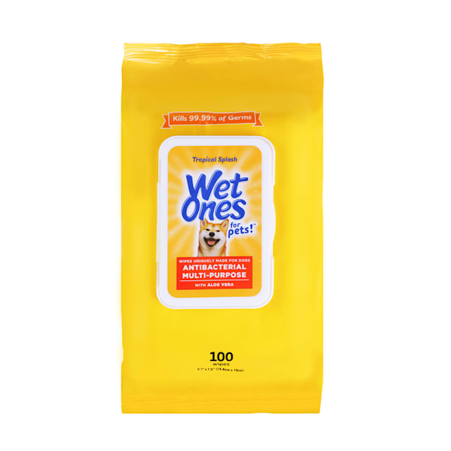 Wet Ones for Pets Antibacterial Multi-Purpose Dog Wipes with Aloe Vera in Tropical Splash and Wet Lock Seal, Count of 100 - Carousel image #1