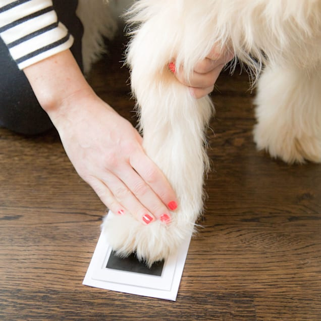 Pearhead Pet Pawprints Clean-Touch Ink Pad for Dogs and Cats - Carousel image #1