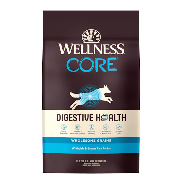 Wellness CORE Digestive Health Whitefish & Brown Rice Dry Dog Food, 22 lbs. - Carousel image #1