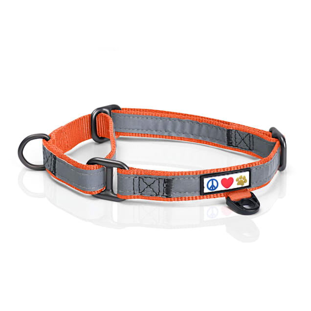 Pawtitas Orange Reflective Martingale Dog Collar, Small - Carousel image #1