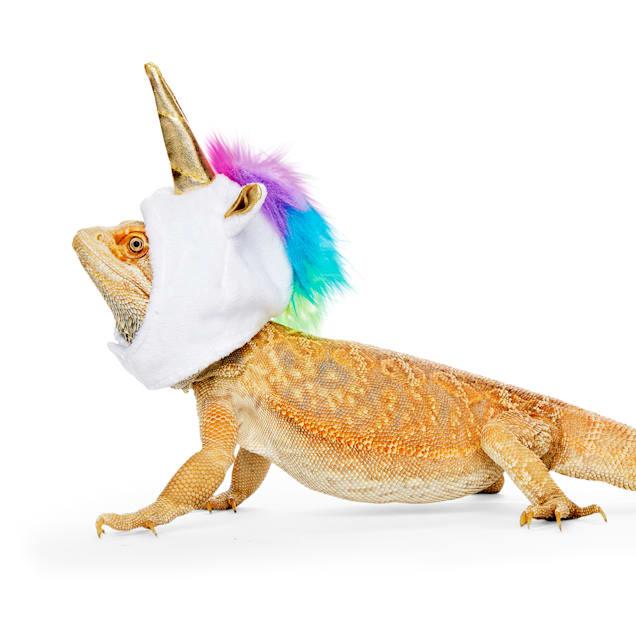 Bootique Born to Unicorn Bearded Dragon Headpiece - Carousel image #1