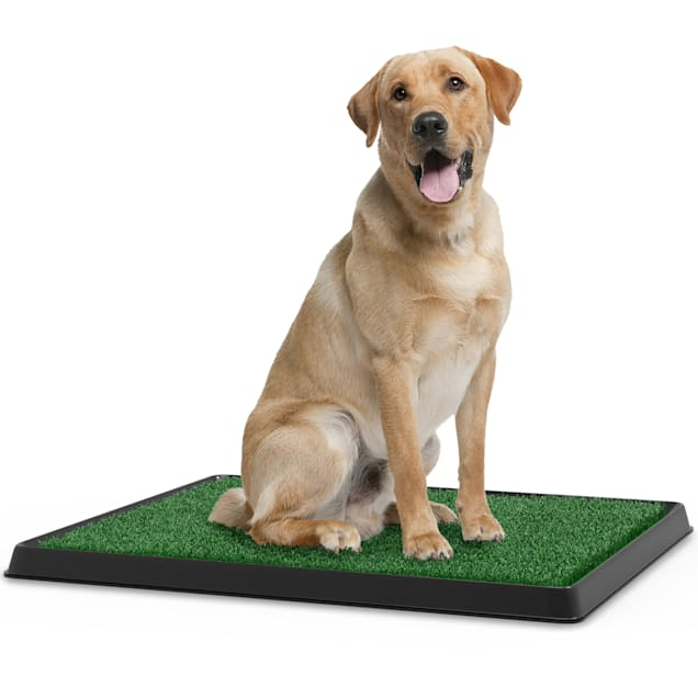 """Pet Adobe Artificial Grass Potty Trainer Mat for Dogs, 20"""" L X 25"""" W - Carousel image #1"""