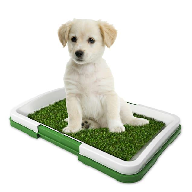 "Pet Adobe Puppy Artificial Grass Potty Trainer Mat, 18.5"" L X 13.5"" W - Carousel image #1"