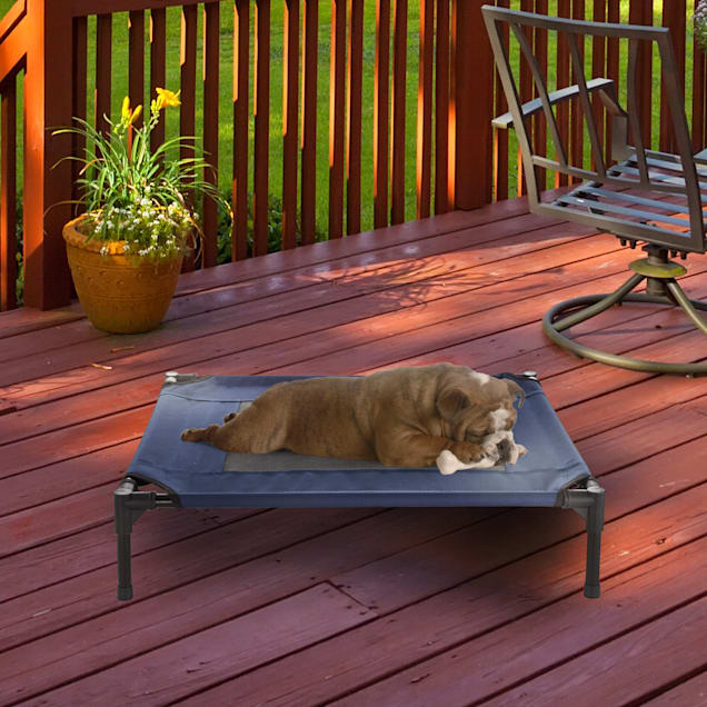 """Pet Adobe Navy Steel Frame Elevated Dog Bed, 30"""" L X 24"""" W - Carousel image #1"""