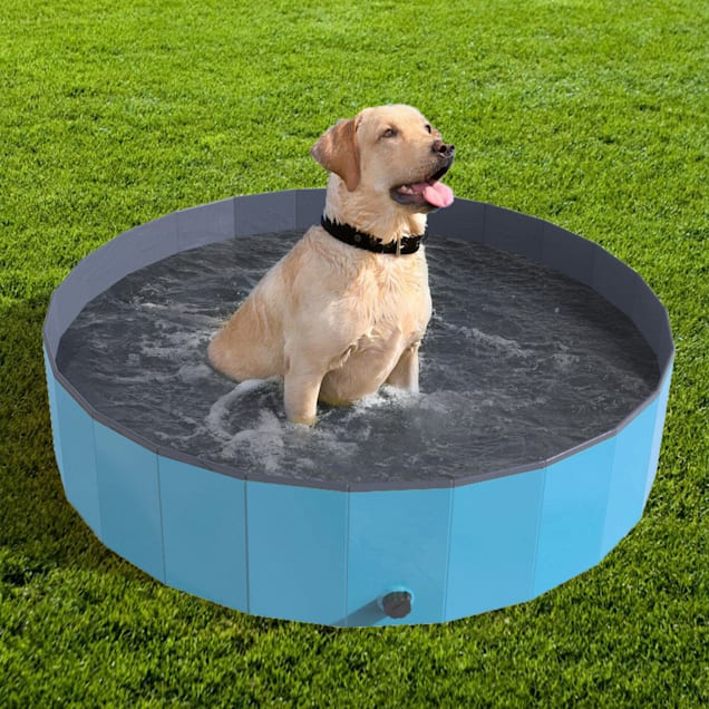 Pet Pal Folding Pet Pool and Bath Tub - Carousel image #1