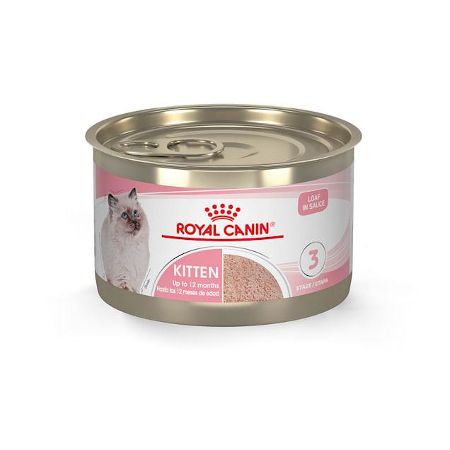 Royal Canin Feline Health Nutrition Kitten Loaf in Sauce Wet Food, 5.1 oz., Case of 24 - Carousel image #1
