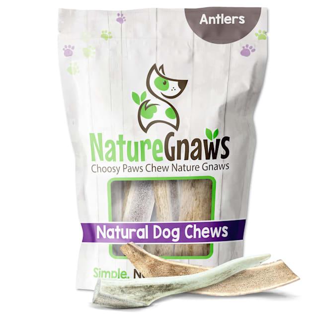 Nature Gnaws Antler Natural Dog Chews, 16 oz. - Carousel image #1