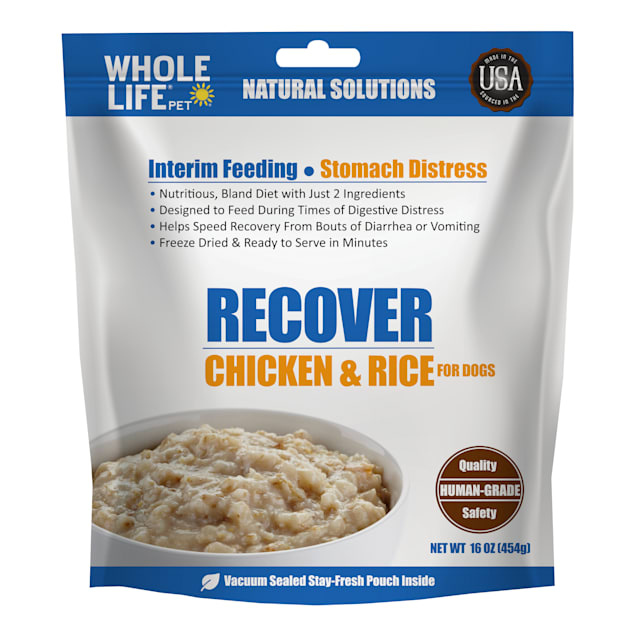 Whole Life Pet Recover Chicken and Rice Interim Dog Food for Stomach Distress, 16 oz. - Carousel image #1