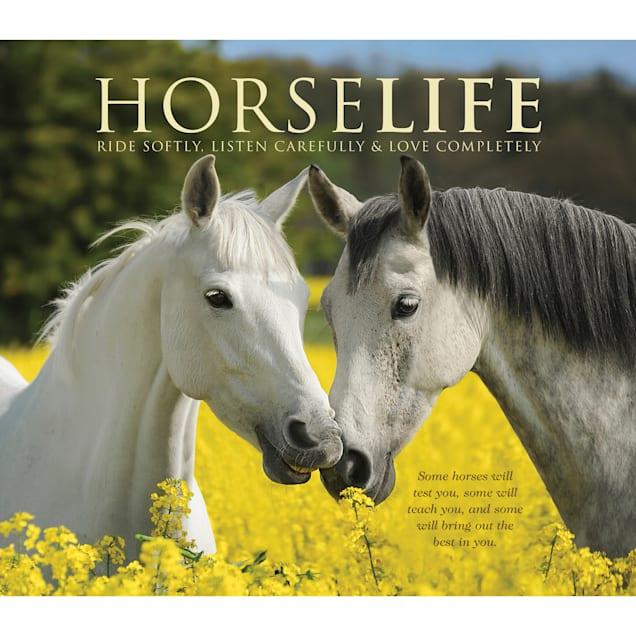 Willow Creek Press Horselife Book - Carousel image #1