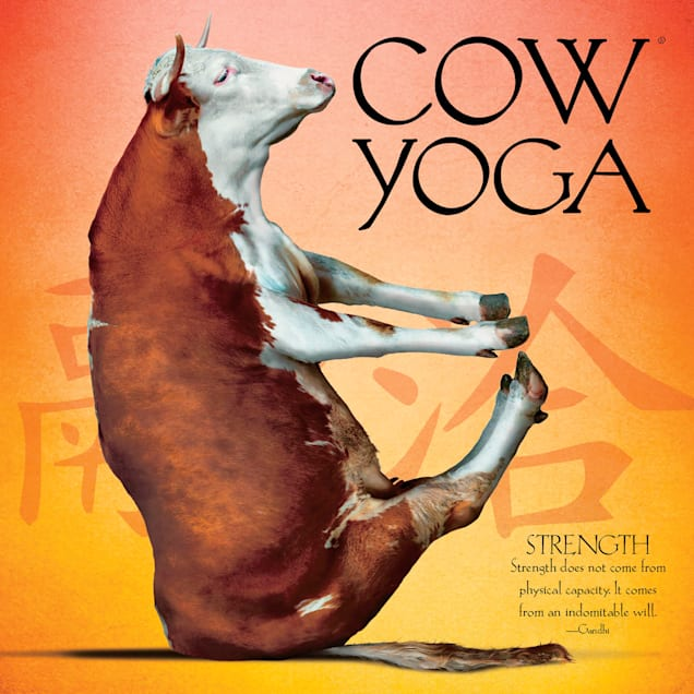 Willow Creek Press Cow Yoga Book - Carousel image #1