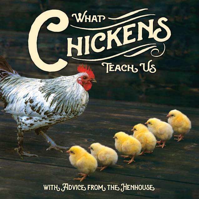Willow Creek Press What Chickens Teach Us Book - Carousel image #1