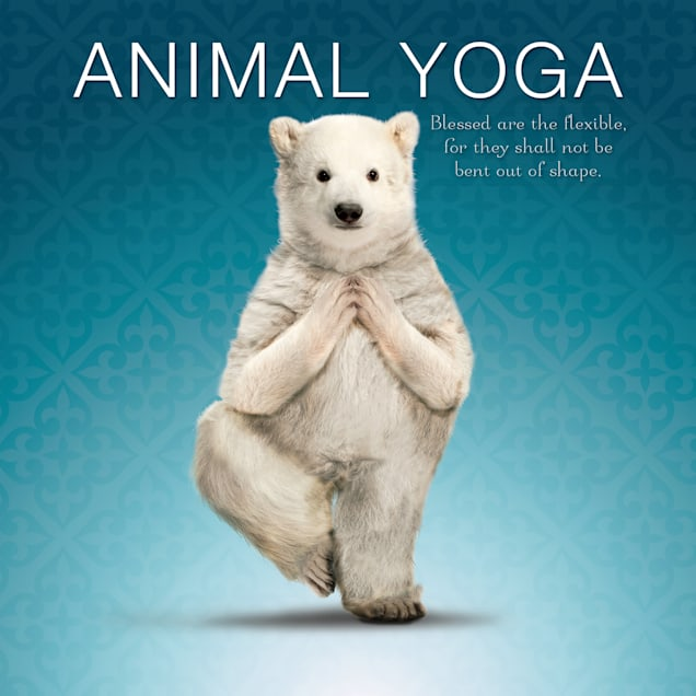 Willow Creek Press Animal Yoga Book - Carousel image #1