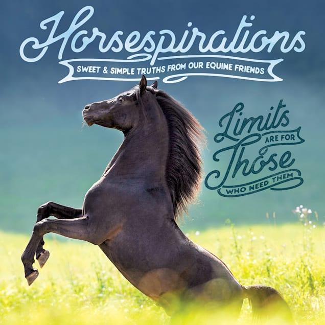 Willow Creek Press Horsespirations Book - Carousel image #1