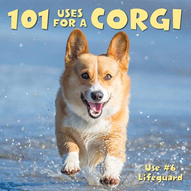 Willow Creek Press 101 Uses For a Corgi Book - Carousel image #1