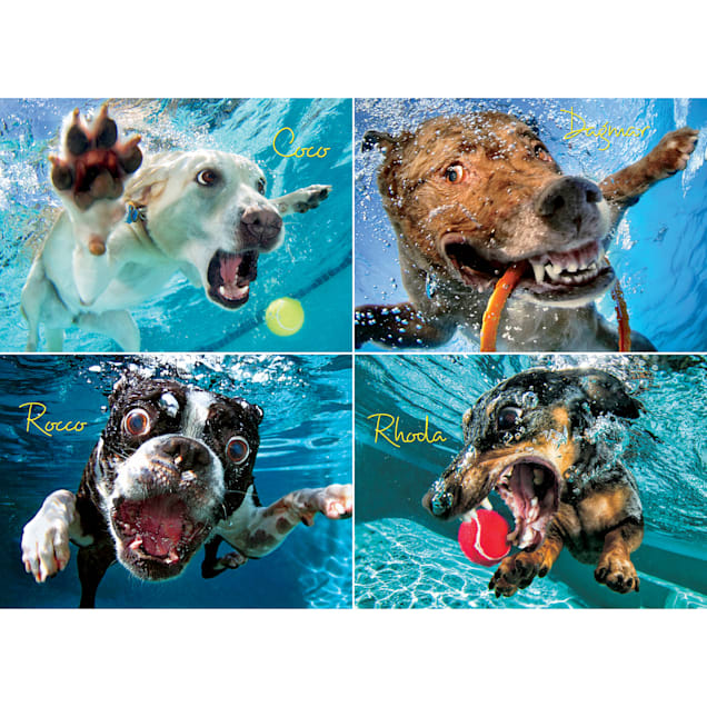 Willow Creek Press Underwater Dogs: Pool Pawty 1000-Piece Puzzle - Carousel image #1