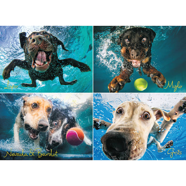 Willow Creek Press Underwater Dogs: Splash 1000-Piece Puzzle - Carousel image #1