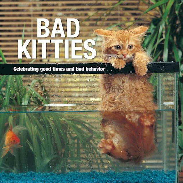 Willow Creek Press Bad Kitties Book - Carousel image #1