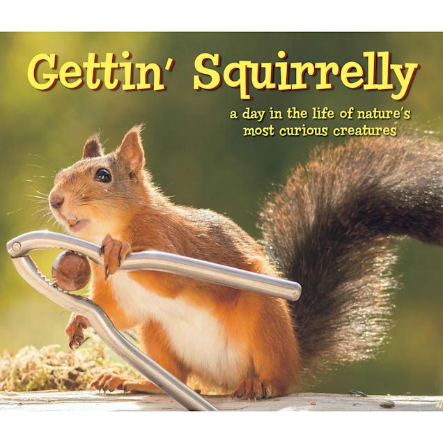 Willow Creek Press Gettin' Squirrelly Book - Carousel image #1