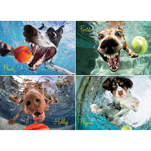 Willow Creek Press Underwater Dogs: Play Ball 1000-Piece Puzzle - Carousel image #1