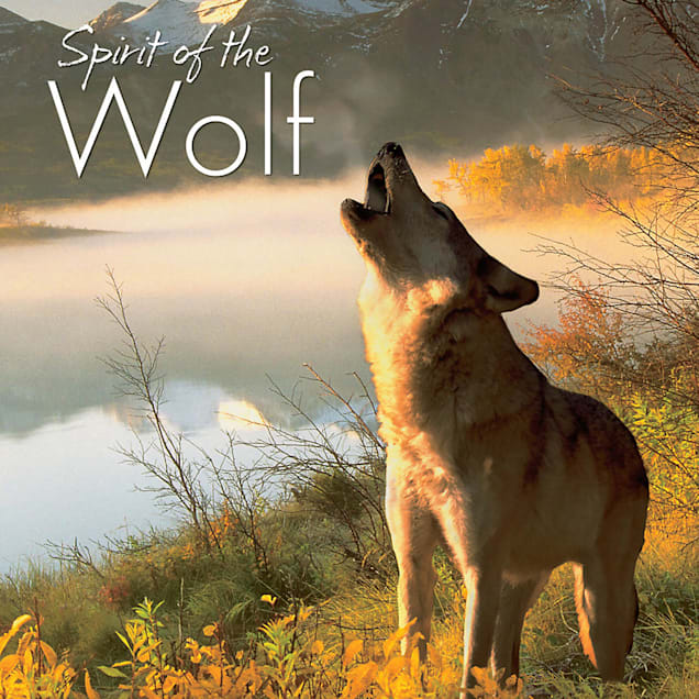 Willow Creek Press Spirit Of The Wolf Book - Carousel image #1
