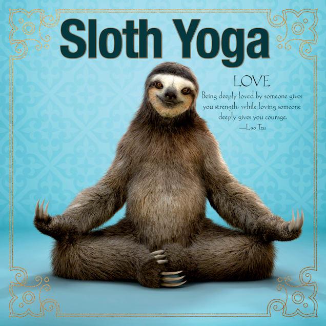 Willow Creek Press Sloth Yoga Book - Carousel image #1