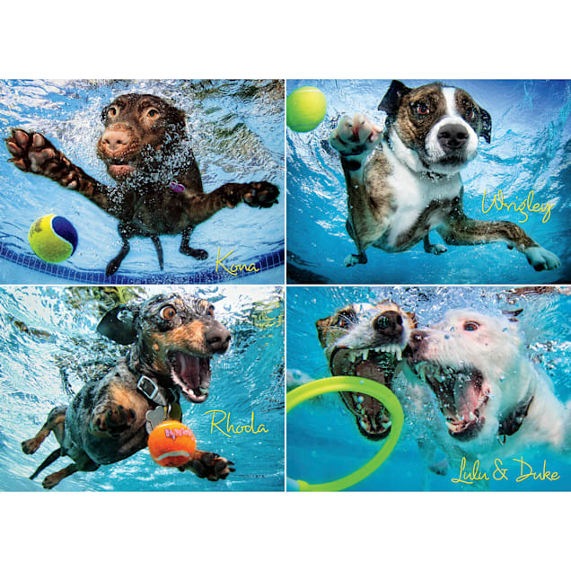 Willow Creek Press Underwater Dogs 2 1000-piece Puzzle - Carousel image #1