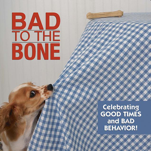 Willow Creek Press Bad To The Bone Book - Carousel image #1