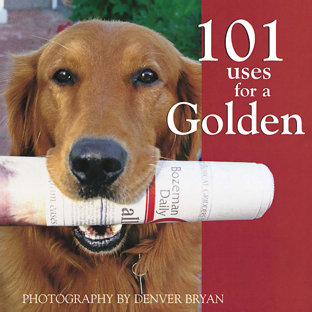Willow Creek Press 101 Uses For A Golden Book - Carousel image #1