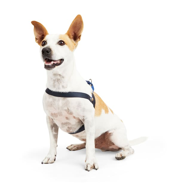 YOULY The Trailblazer Blue Wipeable Dog Harness, X-Small - Carousel image #1