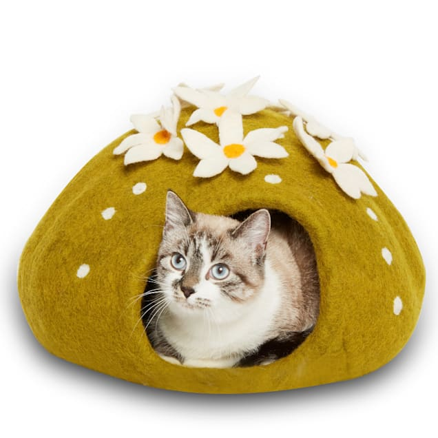 "Dharma Dog Karma Cat Cactus Wool Pet Cave, 16"" L X 16"" W X 12"" H - Carousel image #1"