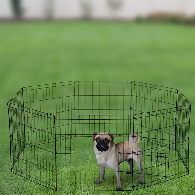 """Paws and Pals Wire Pet Play Pen, 48"""" L X 48"""" W X 24"""" H - Carousel image #1"""