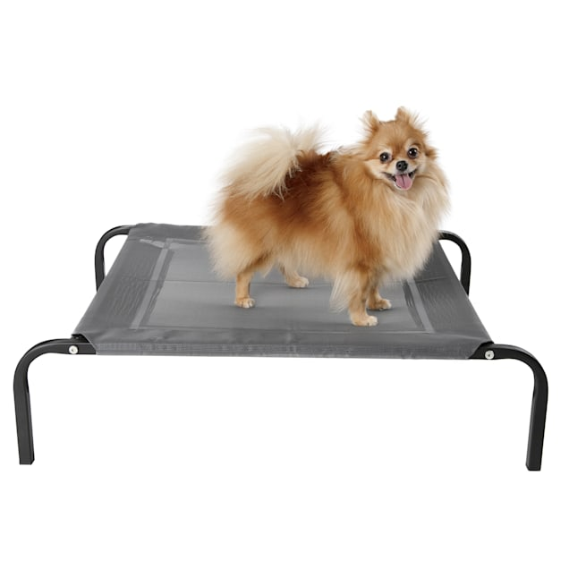 """Paws & Pals Gray Elevated Pet Bed Lounger, 32"""" L X 25"""" W X 8"""" H - Carousel image #1"""