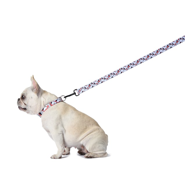 Fetch for Pets Peanuts Red Snoopy Dog Leash, 6 ft. - Carousel image #1