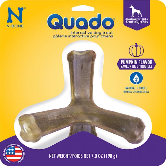 N-Bone Quado Pumpkin Flavor Interactive Large Dog Treats, 7 oz. - Carousel image #1