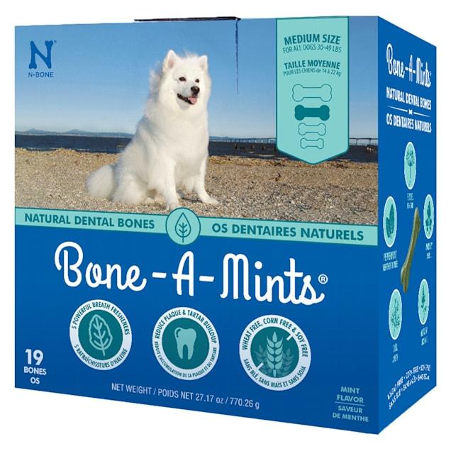 N-Bone Bone-A-Mints Mint Flavor Daily Dental Medium Bone for Dogs, 27.17 oz. - Carousel image #1