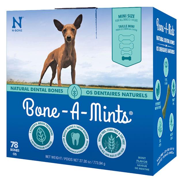 N-Bone Bone-A-Mints Mint Flavor Daily Dental X-Small Bone for Dogs, 27.30 oz. - Carousel image #1