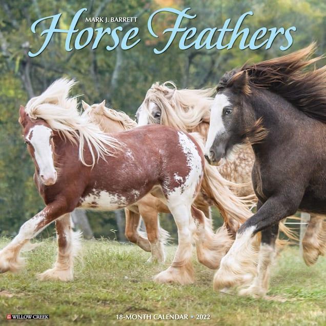 Willow Creek Press Horse Feathers 2022 Wall Calendar - Carousel image #1