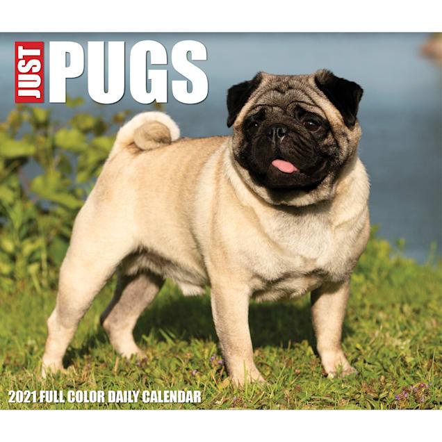 Willow Creek Press Pugs 2022 Box Calendar - Carousel image #1