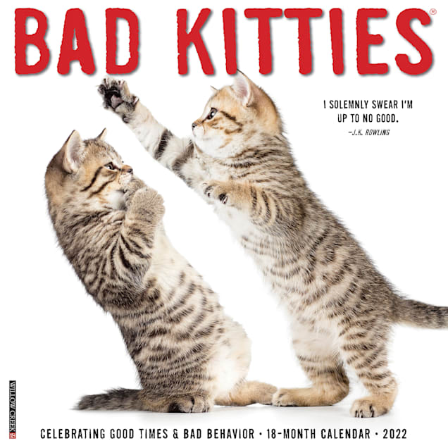 Willow Creek Press Bad Kitties 2022 Wall Calendar - Carousel image #1