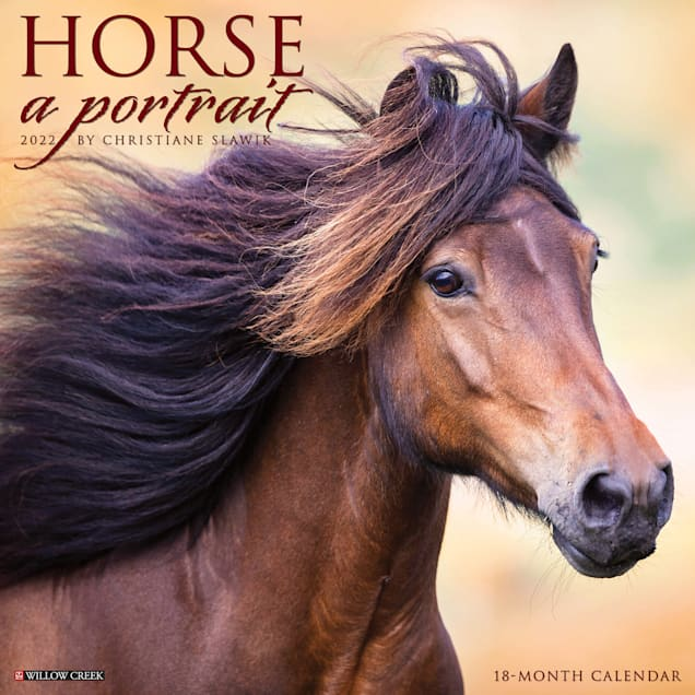Willow Creek Press Horse: A Portrait 2022 Wall Calendar - Carousel image #1