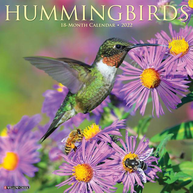 Willow Creek Press Hummingbirds 2022 Wall Calendar - Carousel image #1